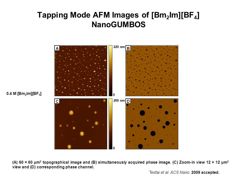 Tapping Mode AFM Images of [Bm2Im][BF4] NanoGUMBOS